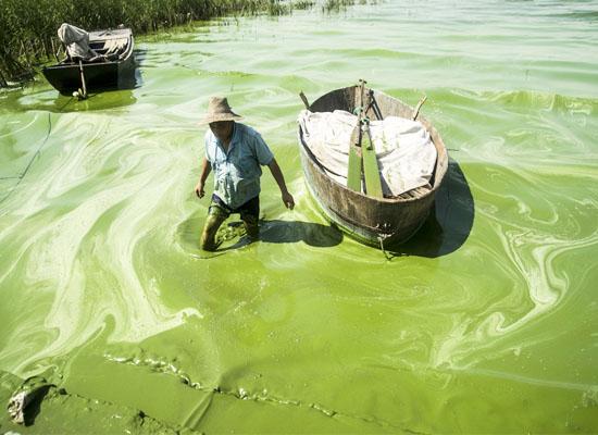загрязнение пресной воды в Китае