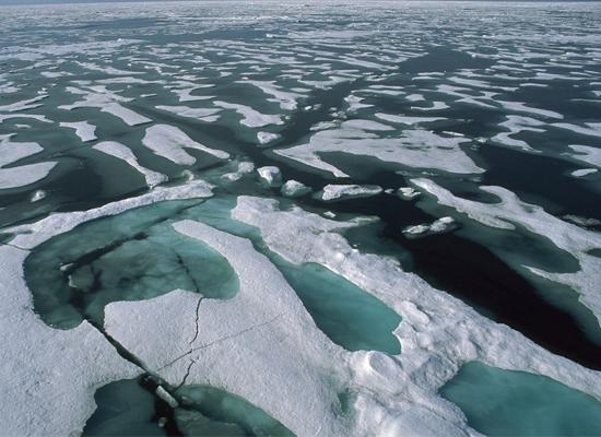 северно ледовитый океан пресный