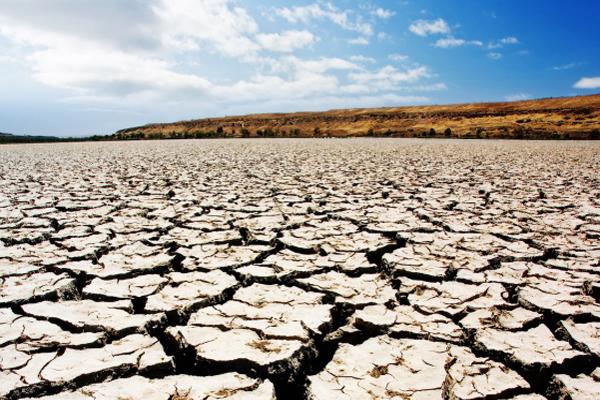 Засуха в казахстане