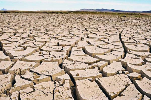 причины и последствия засухи в казахстане