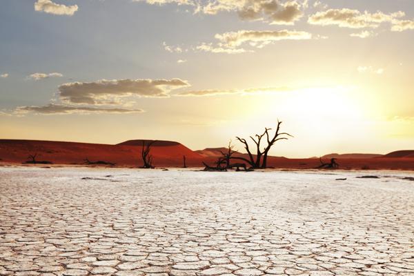 проблемы с засухой в африке