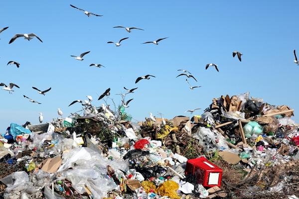 промышленные отходы - industrial waste