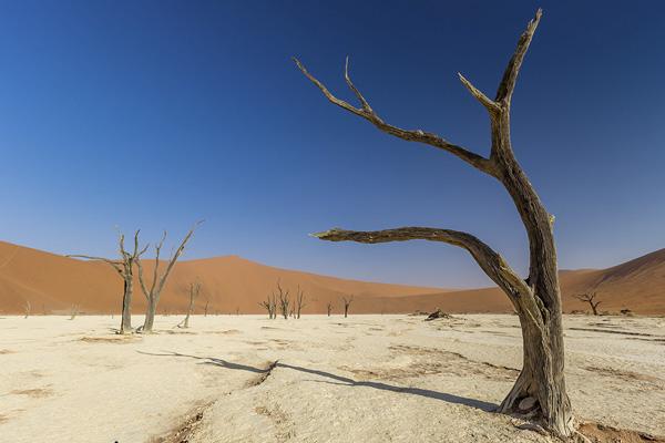 изменение климата из-за парниковых газов