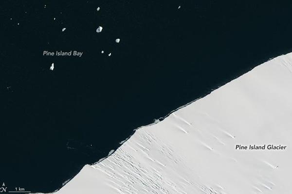 ледник Пайн-Айленд